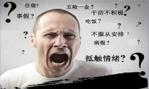 青岛天赐隆成科技有限公司招聘(五险一金)